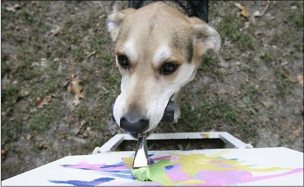 0 - 14 animals that can paint