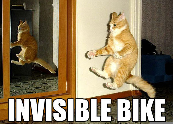 00013z4t - epic invisible cat wins!!!!!!!!!!!!!!!!!!