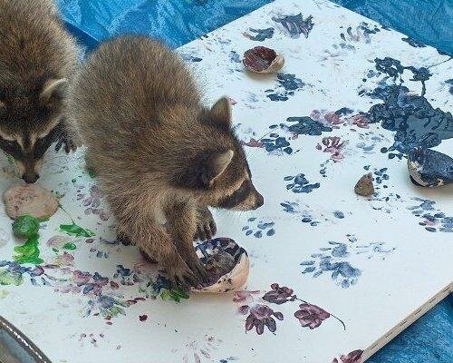 1 - 14 animals that can paint