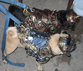 1 - armor for dogs