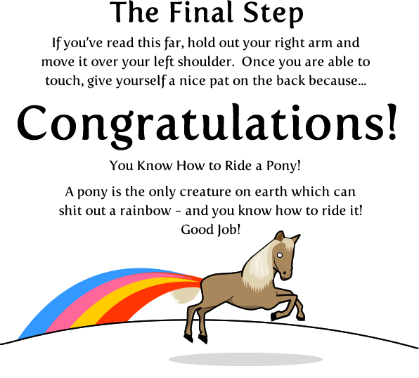 10 - how to ride a pony
