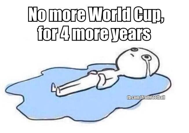 10525681 1106679872705561 2721772314428512905 n - world cup funnies #5 we are the champions