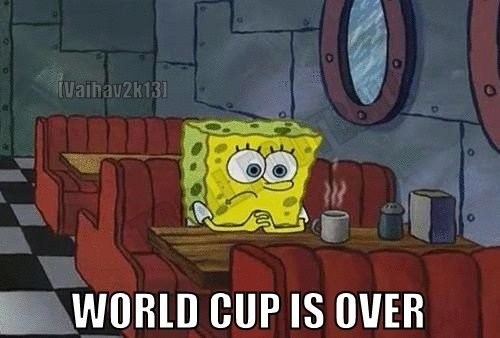 10547558 1105735612799987 5091886144474499245 n - world cup funnies #5 we are the champions