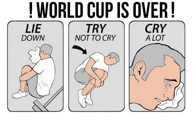 10553458 1107031829337032 4133459922490082705 n - world cup funnies #5 we are the champions
