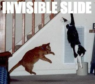 1173277999 slide - cats invisible things: part 2