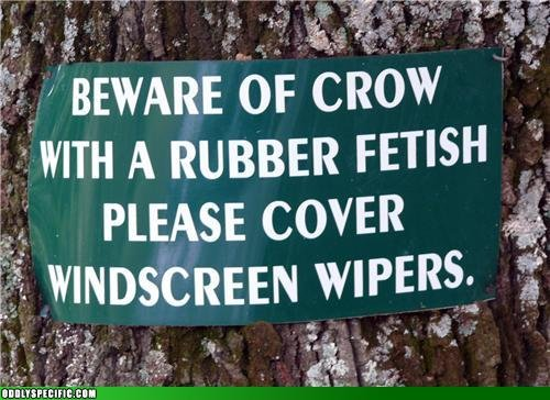 129186461292677900 - some funny signs