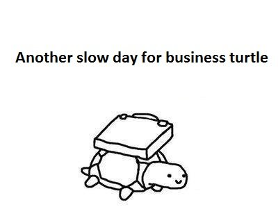 1312694749021 - business turtle has no time for your shenanigans
