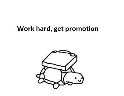 1312695359666 - business turtle has no time for your shenanigans