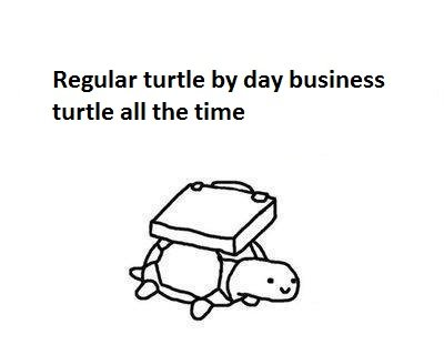 1312695461021 - business turtle has no time for your shenanigans