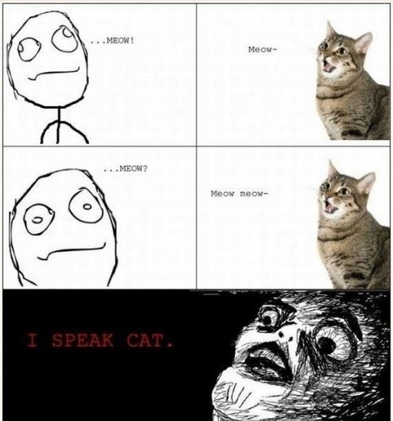1327084352 67688 - some funnies for your night # 15
