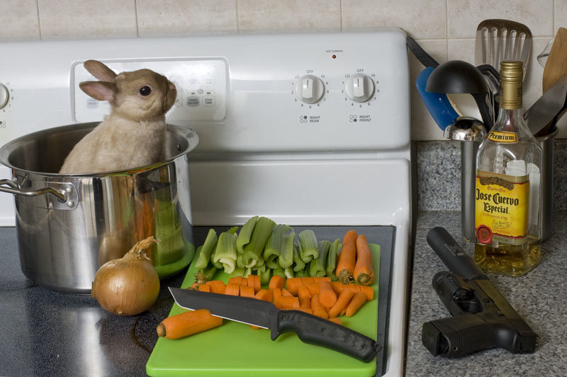 16947 - this is whats in my kitchen right now. sharenator whats in yours?