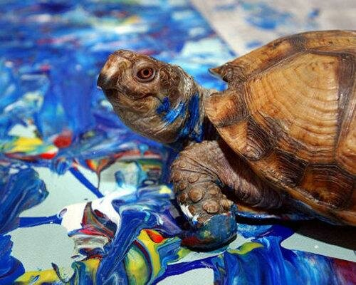 2 - 14 animals that can paint