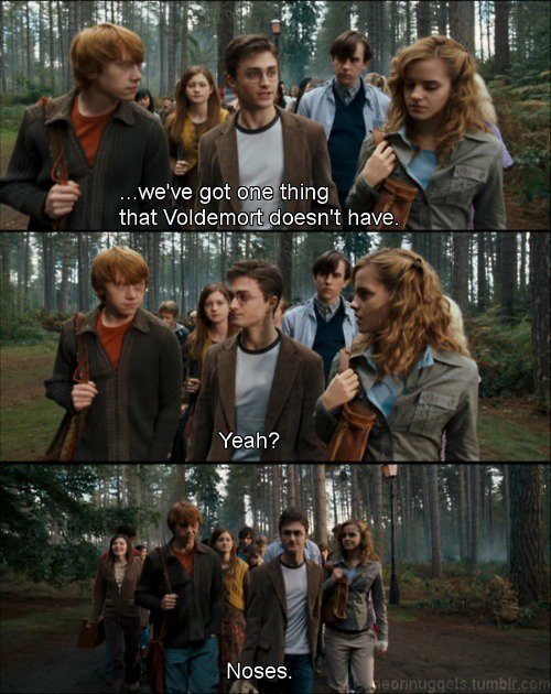 281595 133948306689533 133921736692190 251588 133610 n - harry potter pictures: part 2