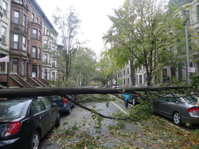 29 - hurricane sandy images (aftermath)