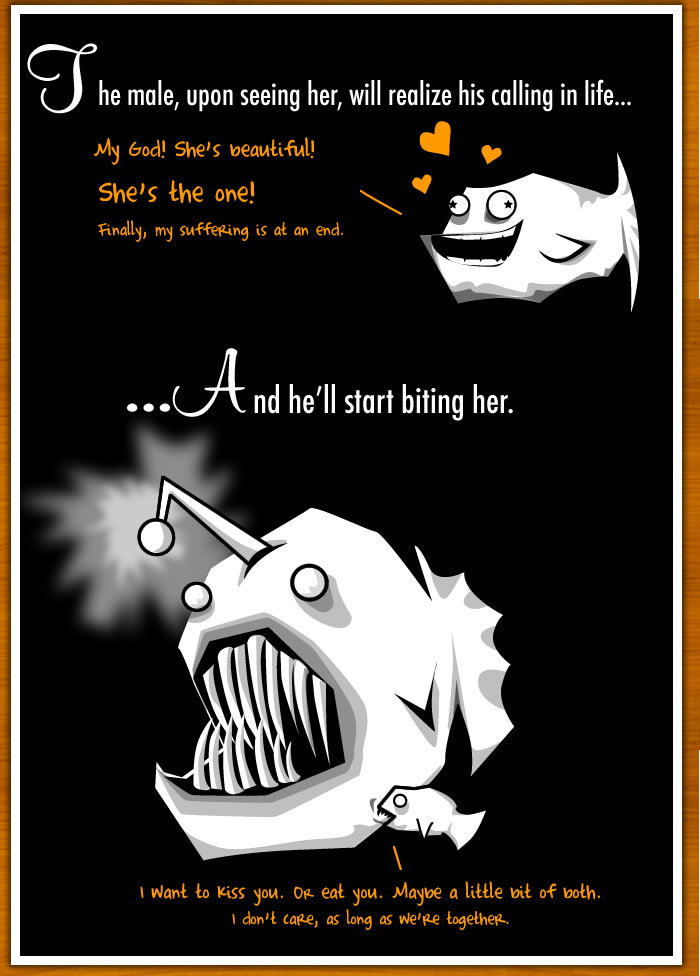 3 - how the male angler fish gets completely screwed