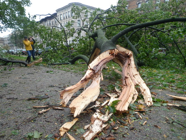 31 - hurricane sandy images (aftermath)