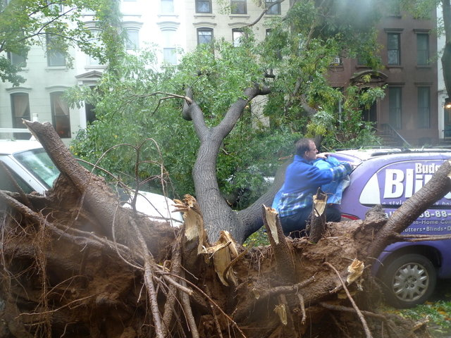 32 - hurricane sandy images (aftermath)