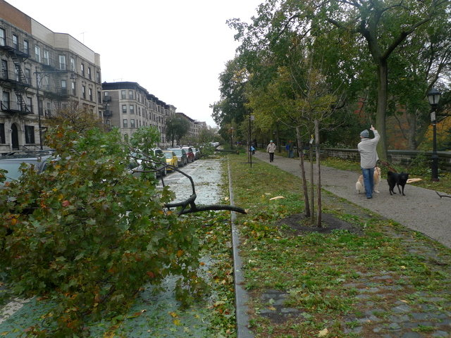33 - hurricane sandy images (aftermath)