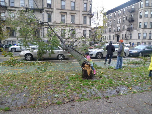 34 - hurricane sandy images (aftermath)