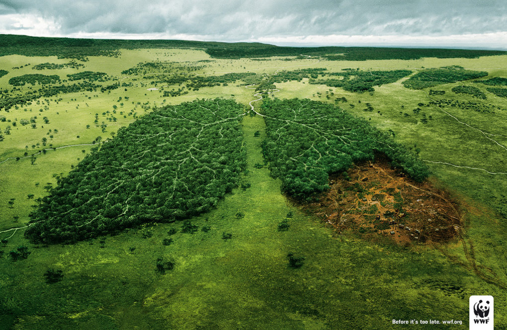 3472074417 60f520b7fb b - very creative advertisement from wwf
