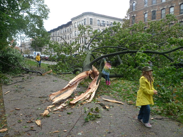 35 - hurricane sandy images (aftermath)