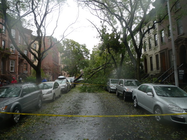 36 - hurricane sandy images (aftermath)