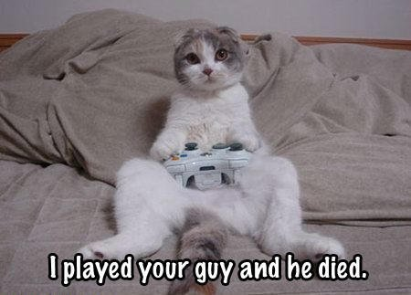 360 cat - funnies 3 (video game edition)