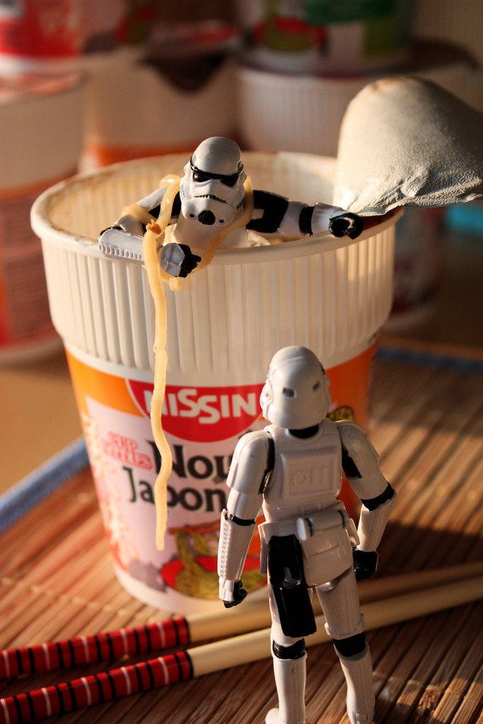 3617044789 290b2a3321 b - daily life of stormtroopers