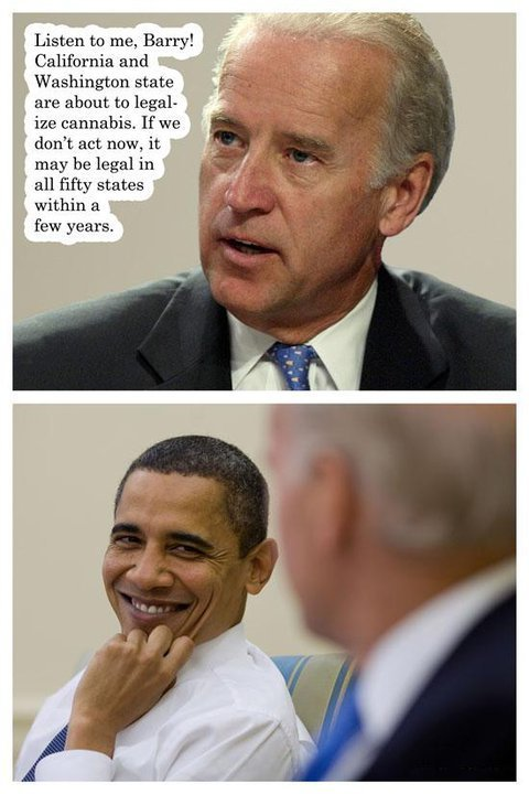 37978 414990924607 34687154607 4682492 1562469 n - obama and cannabis