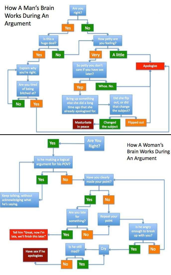 3ixvy - how a man's brain and a woman's brain work during an argument