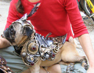 4 - armor for dogs