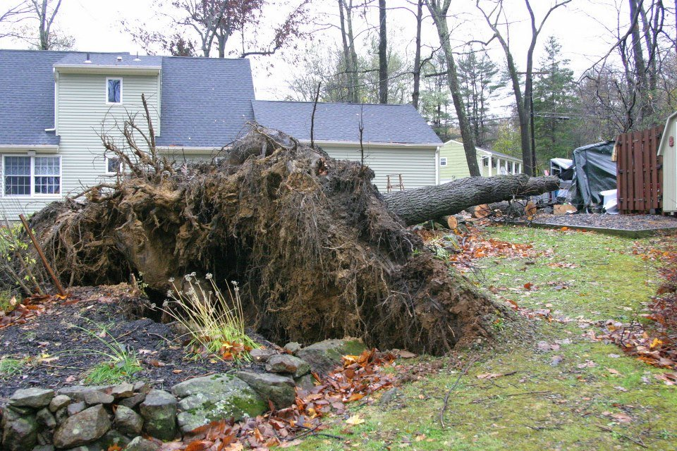 4 - hurricane sandy images (aftermath)
