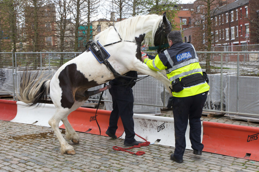 4 - meanwhile, at the smithfield horse fair