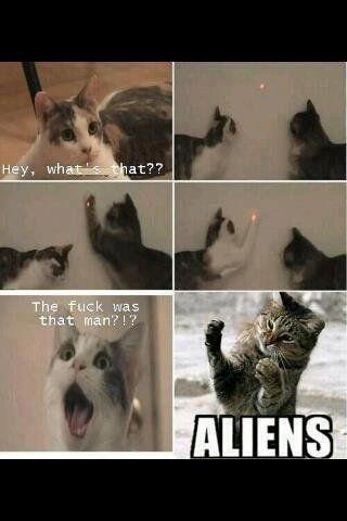 484585 272753302804795 143407765739350 615006 656618078 n - some funnies for your night # 14