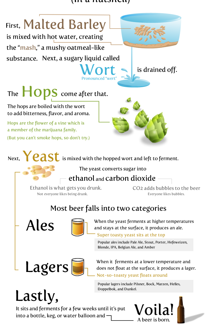 5 - 20 things worth knowing about beer