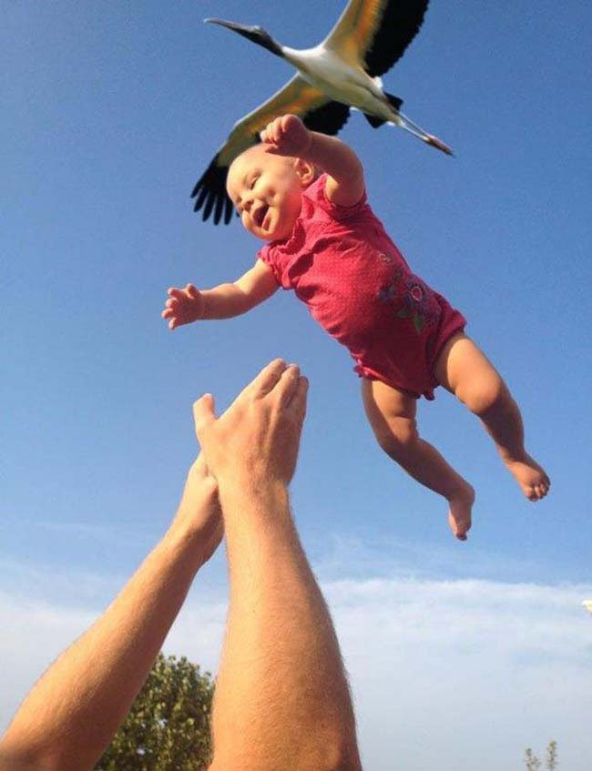 52 copy - the 51 most perfectly timed photos ever.