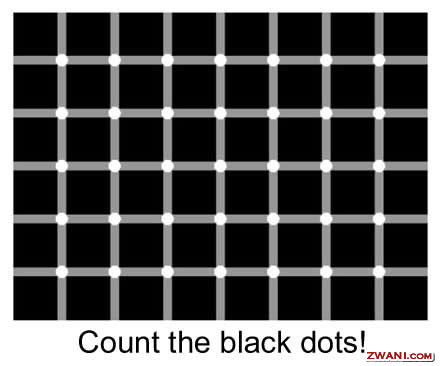 56funny pictures45265 - illusion?? try and count the black dots