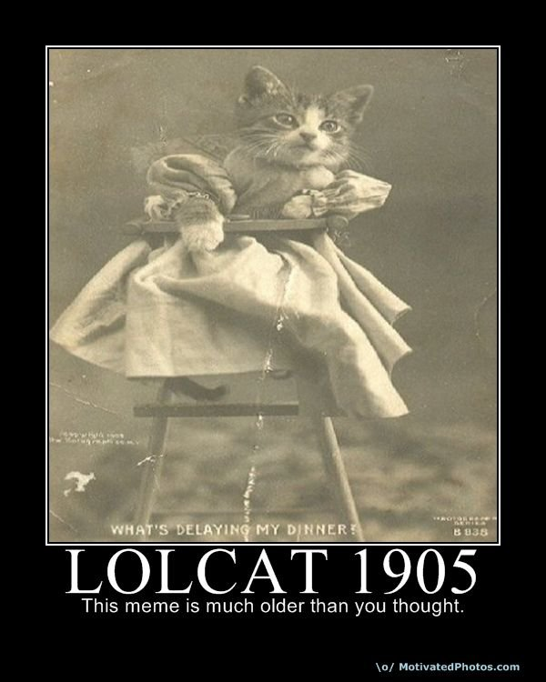 633735211738133460 lolcat1905 - the epic lolcat post