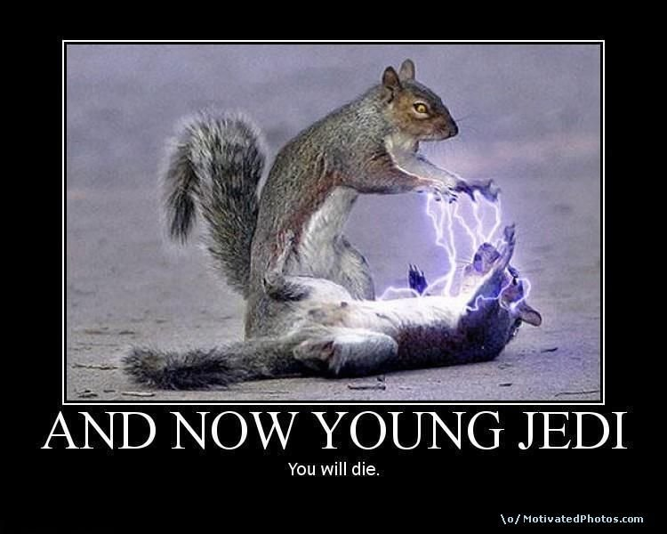633745715245395060 andnowyoungjedi - star wars squirrel poster