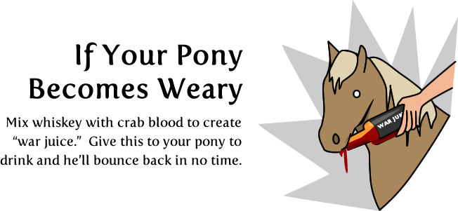 7 - how to ride a pony