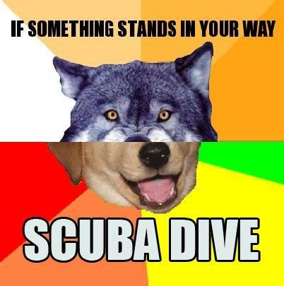 8 - combo-dog the twisted cousin of advice memes