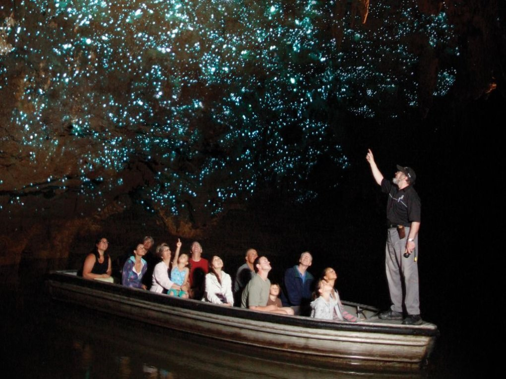 8 - spectacular view inside waitomo caves
