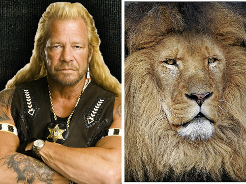 80917779 - celebrity and their animal twins.....
