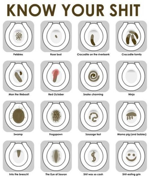 80963559 - what is your poop type ?