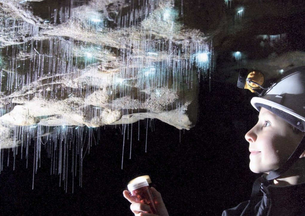 9 - spectacular view inside waitomo caves