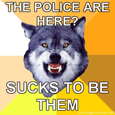 9 - the courage wolf collection says: