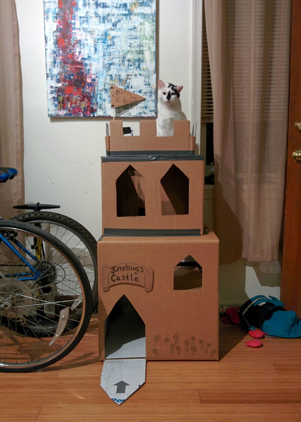 aq4v3oj - why don't we build cardboard castle to our cats? this is how to do it.