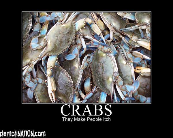 crabs - yet another motivational poster post part 2
