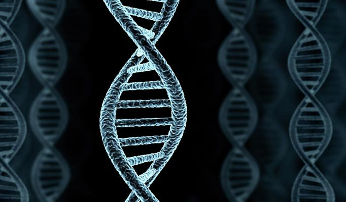 dna - do you want to know how long you will live?