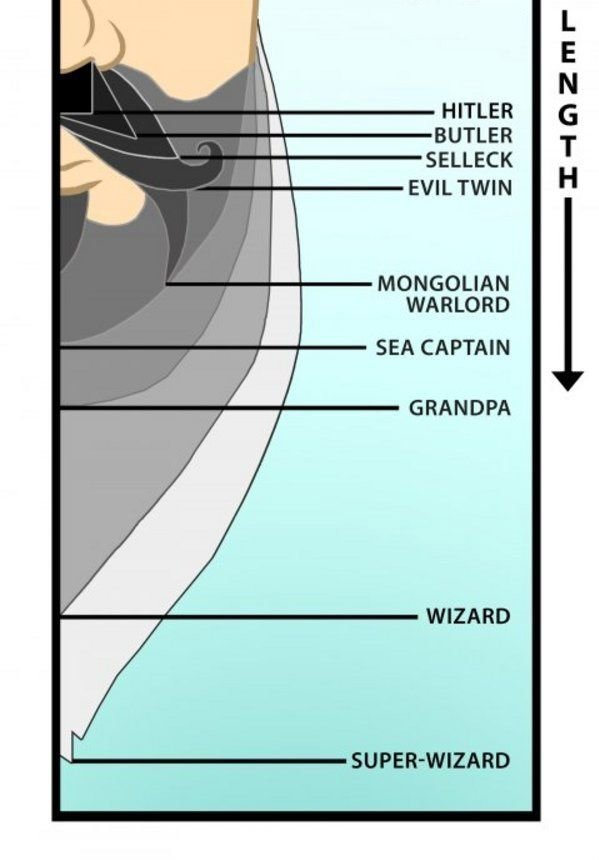 fmabq - what your beard length tells about you